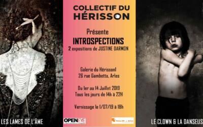 INTROSPECTIONS | Galerie du Hérisson | 1-14 Juillet 2019 – Arles