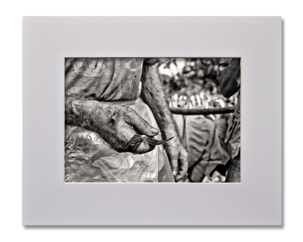 Les mains du Veguero, Série au delà des couleurs par Justine Darmon